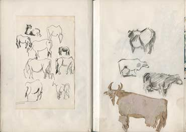Sketchbook A5-02, 09. Pencil drawings and collage (cows).