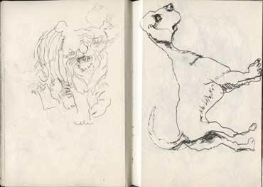 Sketchbook A5-04, 14. Line drawings (tiger and dog).