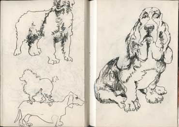 Sketchbook A5-04, 15. Line drawings (dogs).